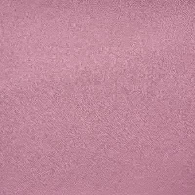 Vigor rosa